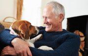 Pets for Alzheimer's